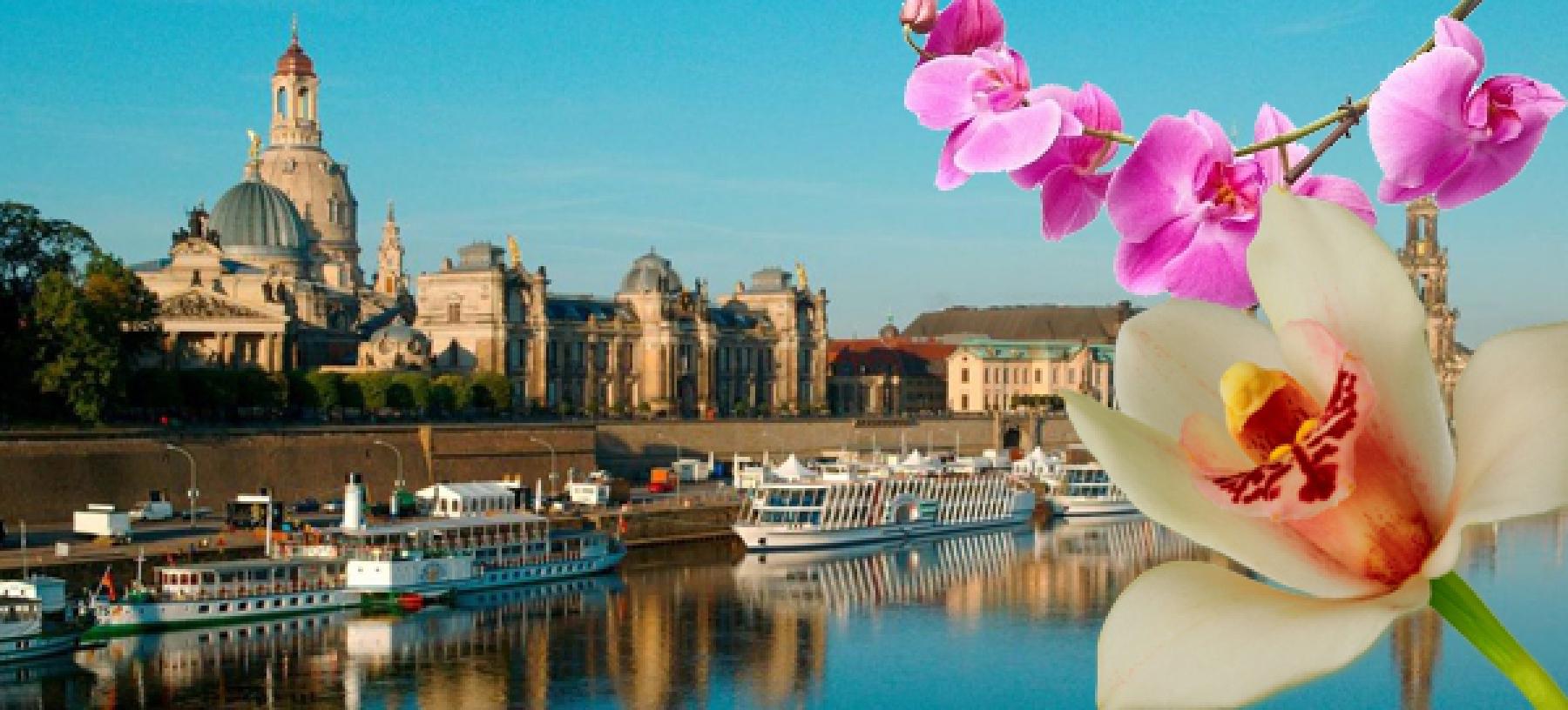 Drážďany – výstava orchidejí autokarem