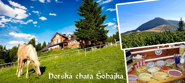 Levná dovolená pro DVA v tradiční chatě Šohajka