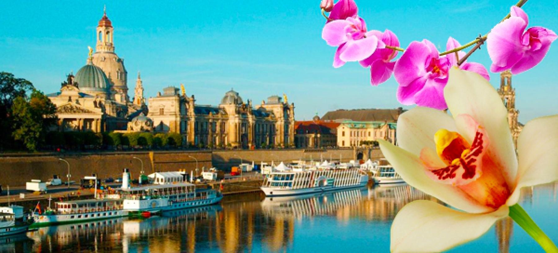 Drážďany – výstava orchidejí: autokarem