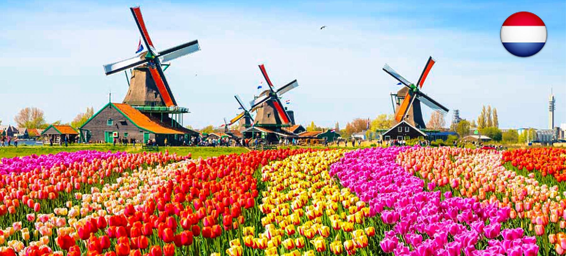 Poznávací zájezd do Holandska s ubytováním